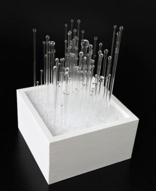 in the white box